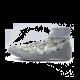 NIKE SPEEDSWEEP VII GRAY/WHITE Nike - 1